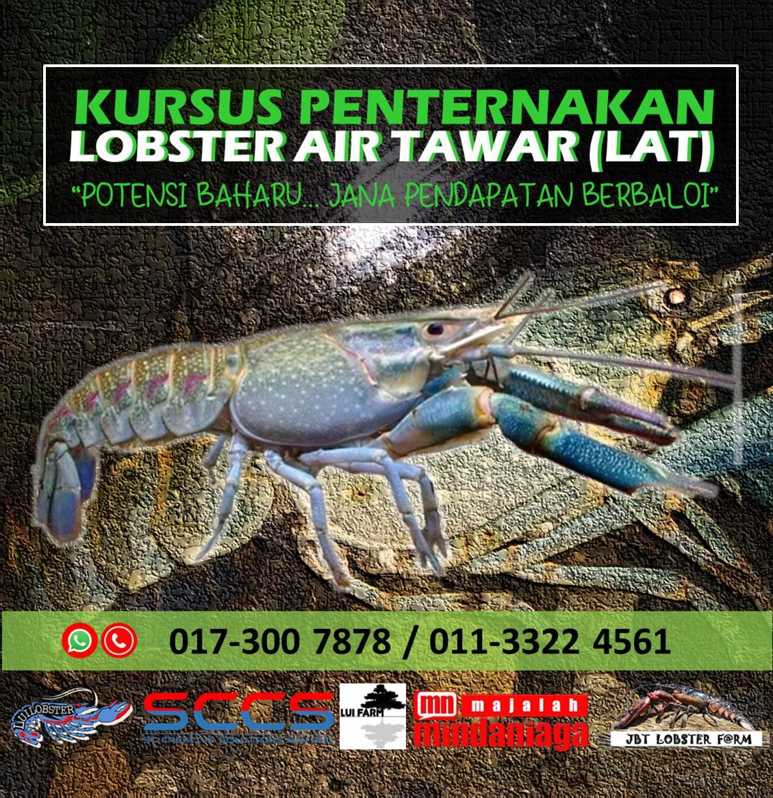 Kursus Penternakan Lobster Air Tawar Lat 2021 M Niaga